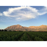 Breedekloof Wine Valley image