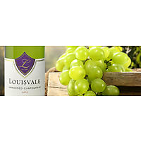 Louisvale Wines image