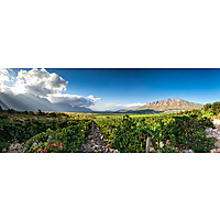 Slanghoek Winery image