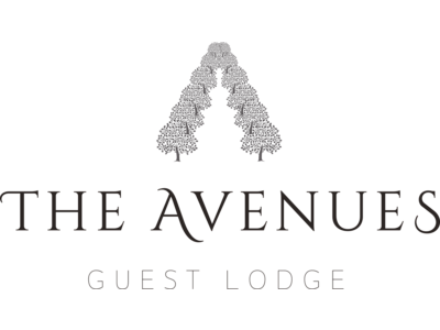 The-Avenues-Logo-600px-Wide-Retina@2x.png - Avenues Guest Lodge image