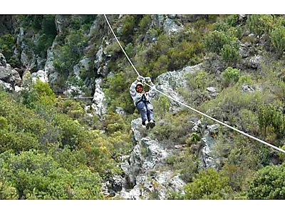 1329978596_W2SSA_Ceres-Zipslide-Tour-Where2Stay.jpg - Ceres Zipslide Adventures image