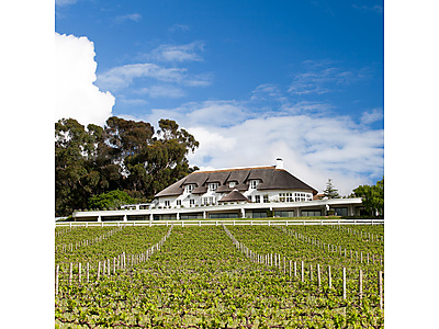 Mont rochelle'.jpg - Mont Rochelle Hotel & Mountain Vineyard Manor House image